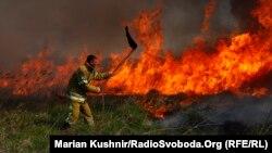 Пожежа біля села на Полтавщині внаслідок підпалу очерету, квітень 2019 року