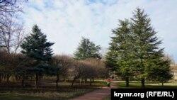 Ботанічний сад Таврійського національного університету імені В.І. Вернадського