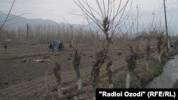 Границата помеѓу Таџикистан и Киргистан