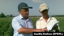 Pambıqçılıq İnstitutunun direktoru Həsənəli Aslanov (solda)