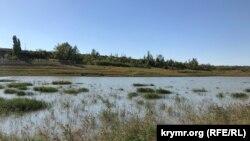 Зміліле Білогірське водосховище, серпень 2020 року