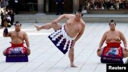 Японский чемпион по сумо Йокозуна Кисеносато. Иллюстративное фото.
