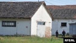 Stajićevo, foto: Vesna Anđić