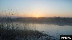 Ақтөбе облысындағы Ілек өзені. Қазан, 2008 ж.