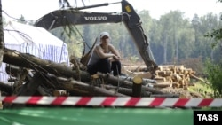 Защитники Химкинского леса вынуждены физически не допускать его вырубки.