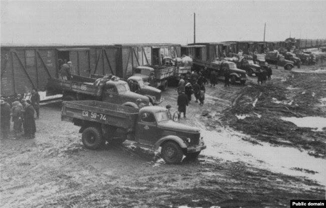 Депортировали в товарных вагонах