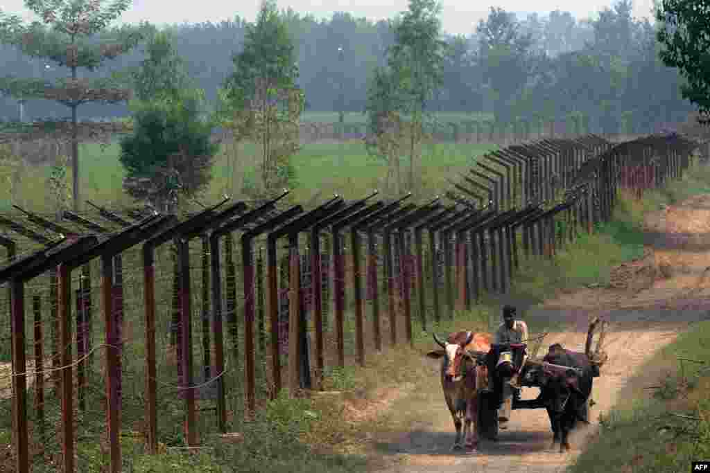 An Indian farmer on a cart passes along the Indian-Pakistan border fence, about 20km from Gurdaspur, Kashmir. (AFP/Narinder Nanu)