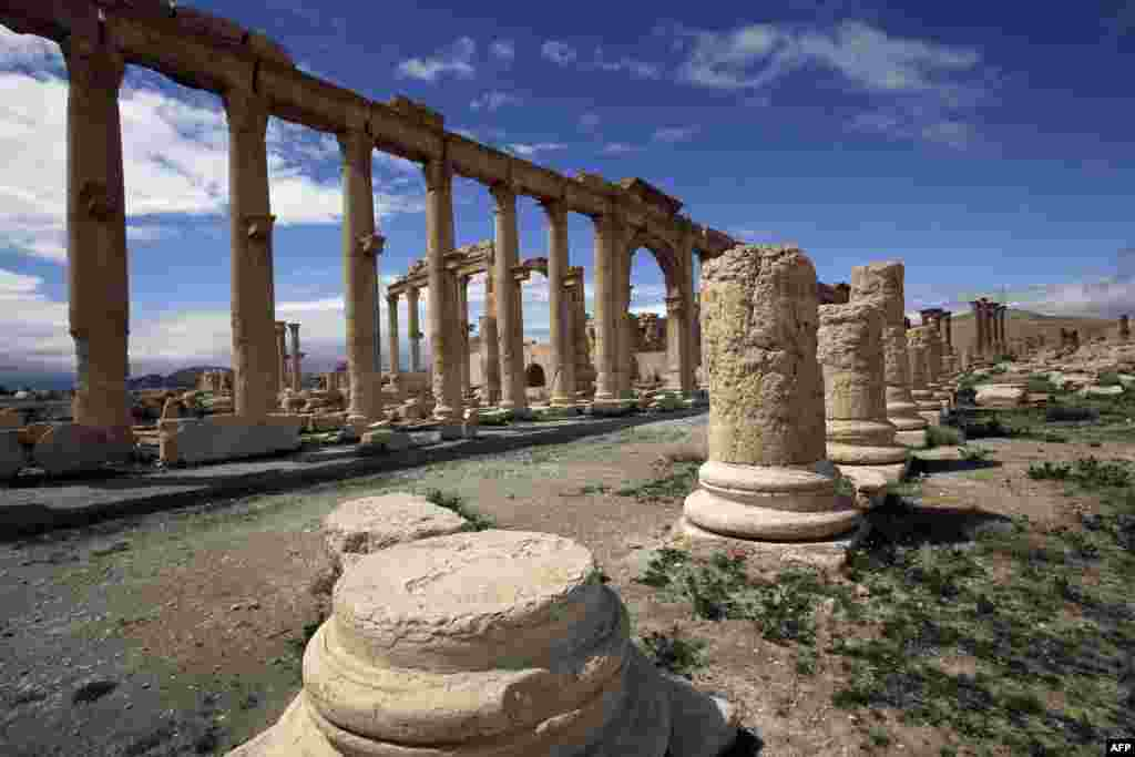 Palmyra is believed to have been founded by King Solomon.