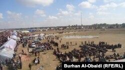 Петочен собир во покраината Анбар
