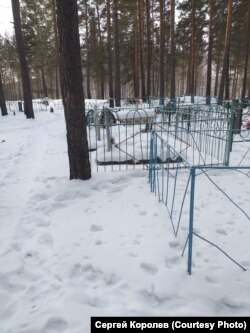 Новое кладбище поселка Шумский