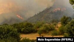 Сильный ветер раздул огонь с новой силой, и ближе к полуночи территория, охваченная пожаром, расширилась в несколько раз