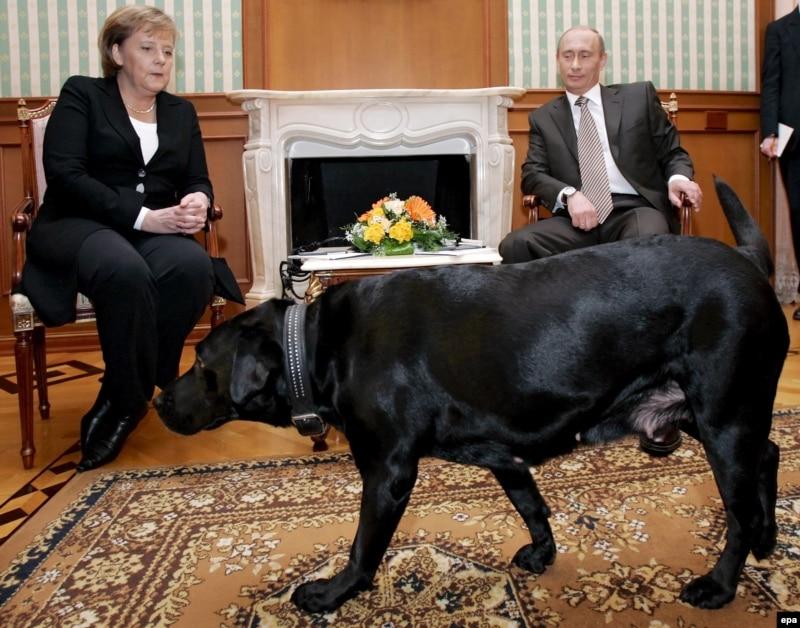 前へ 次へ 出典  KGB流心理作戦 プーチン・マジック・犬
