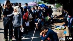 Pamje e imigrantëve ilegalë në Preshevë, afër kufirit të Serbisë me Maqedoninë