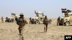 Pamje e forcave irakiane në provincën Anbar në Irak