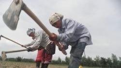 Тилалев: Кыргызстанда жүргөн мыйзамсыз мигранттар 100 миңден ашты