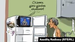 """Цветущая страна"". Карикатура. Гюндюз Агаев."