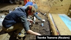 The latest findings are based on research conducted at the Bacho Kiro cave in Bulgaria.