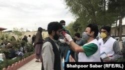رئیس صحت عامه هرات به رادیو آزادی ۱۵ از ثبت موردمثبت ویروس کرونا در این ولایت خبر داده است.