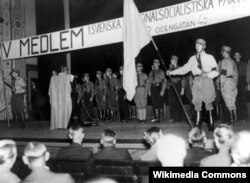 Митинг Шведской национал-социалистической партии. 1933