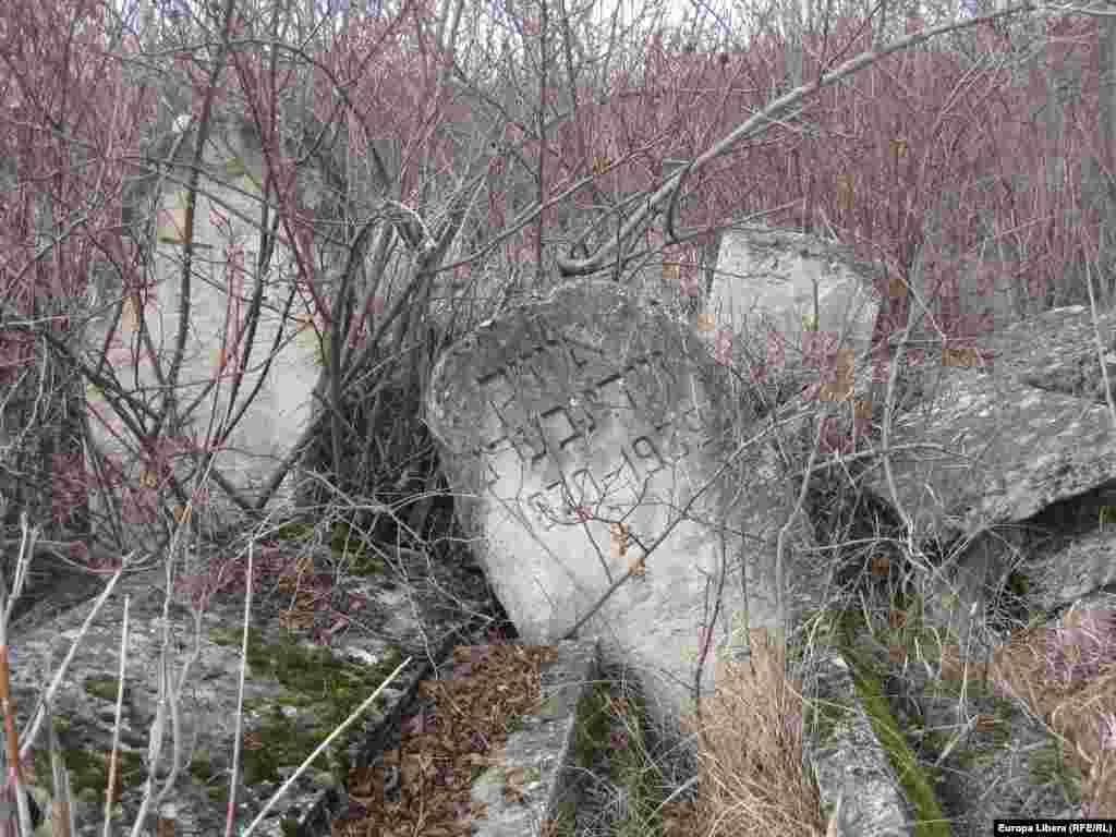 Vechi pietre tombale în cimitirul evreiesc abandonat de la Rezina pe Nistru.