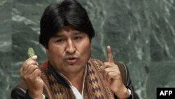 Эво Моралес на трибуне Генассамблеи ООН с листом коки в руке