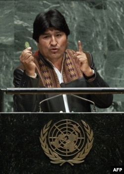 Президент Боливии Эво Моралес, один из главных популяризаторов коки, на трибуне ООН