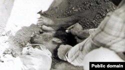 این عکس توسط فعالان حقوق بشر منتشر شده و گفته می شود، اجساد قربانیان اعدام های دستجمعی سال ۱۳۶۷ در خاوران تهران را نشان می دهد.