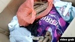 Человеческие кости, сложенные археологами в коробки после раскопок