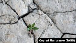 «Вимушене рішення»: воду в Криму почали подавати за графіком (фотогалерея)