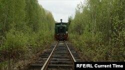 За линией следит Санкинское депо узкоколейки. Часть пути иногда смывает весенним паводком: вокруг болота