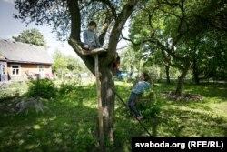 Радамір пабудаваў домік на дрэве, а Яраслаў завёў там «гарод»
