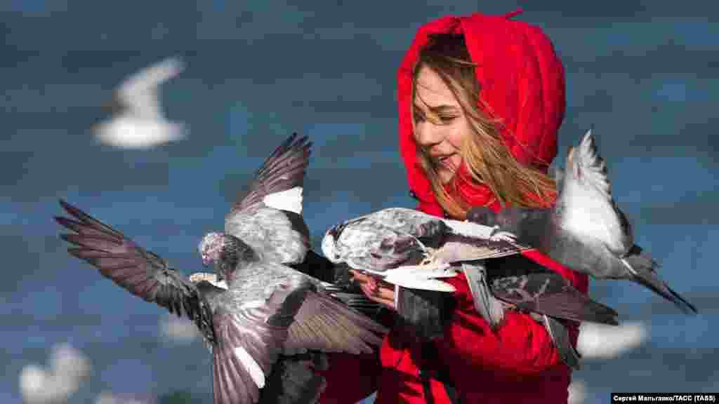 Дівчина годує голубів на березі Чорного моря в Феодосії