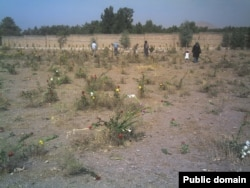 Iran's Khavaran cemetery is a mass grave site for political prisoners killed in a spate of executions in 1988. (file photo)