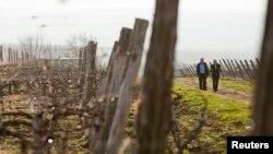De astăzi agricultorii din R. Moldova pot depune cererile de subvenționare la AIPA