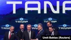 TANAP-ın açılışı. 12 iyun 2018