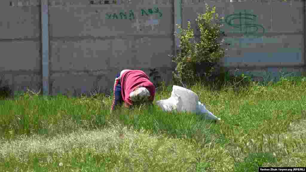 Женщина рвет траву для домашних животных
