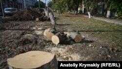Вирубка дерев у Сімферополі, архівне фото