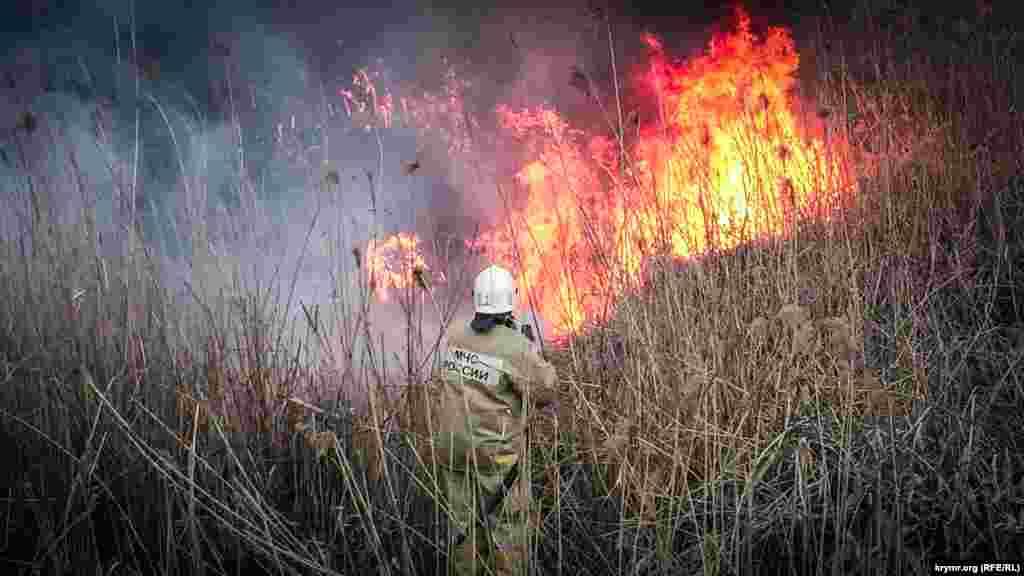 Камышовое поле загорелось на объездной дорогое напротив торгово-развлекательного центра FM между заправкой и жилым микрорайоном в Симферополе
