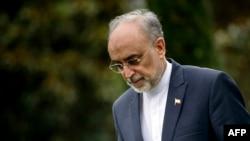 علی اکبر صالحی، رییس سازمان انرژی اتمی ایران