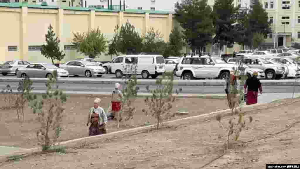 Уборщики улиц столицы Туркменистана