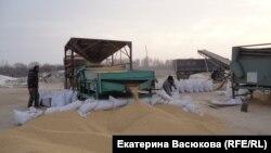 Китайские сельхозрабочие в Димитрове