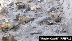 Душанбе әуежайы маңында шабуыл жасалған жердегі оқ қалдықтары. Тәжікстан, 4 қыркүйек 2015 жыл.