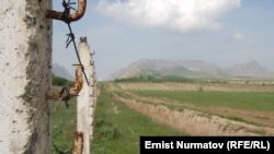Кыргыз-өзбек чек арасын көпчүлүк жерлерде Өзбекстан тарабынан атайын казылган ушундай аң бөлүп турат.