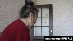 49 жастағы баласынан зорлық-зомбылық көріп жүрген 72 жастағы Қалдығыз Омарова (аты-жөні өзгертілді) Шымкент қаласы Еңбекші аудандық полиция бөлімшесіне шағым түсірген. Шымкент, 25 сәуір 2017 жыл.