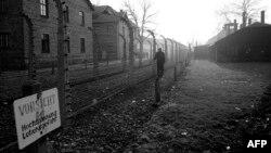 Aushvic, Poloni