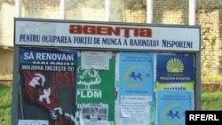 La Nisporeni (Foto: Iuri Baranovschi)