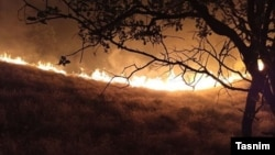 فرماندار بویراحمد، اواخر شب ۲۳ تیر ماه به خبرگزاری ایسنا گفته حریق «بین ۳۰ تا ۴۰ کیلومتر» وسعت داشته و از ۲۱ تیر ماه آغاز شدهاست.