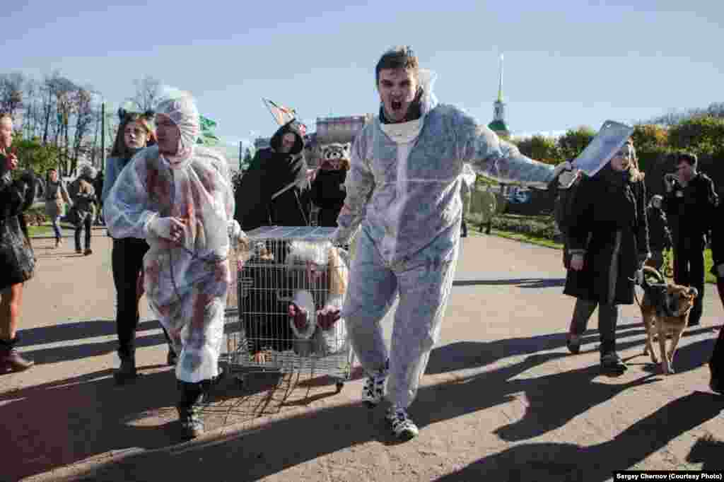 Only 2,000 Russians rallied across the country, but activists say their mere existence is a sign of how the Internet -- and with it rising awareness of animal cruelty -- is rapidly transforming what has long been a nonissue in Russia into a hot topic for the younger generation.