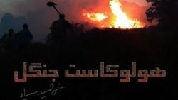 موسیقی امروز: شنبه اول شهریور ۱۳۹۳