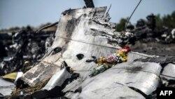 На месте падения обломков самолета рейса MH17, Донецкая область, июль 2014 год